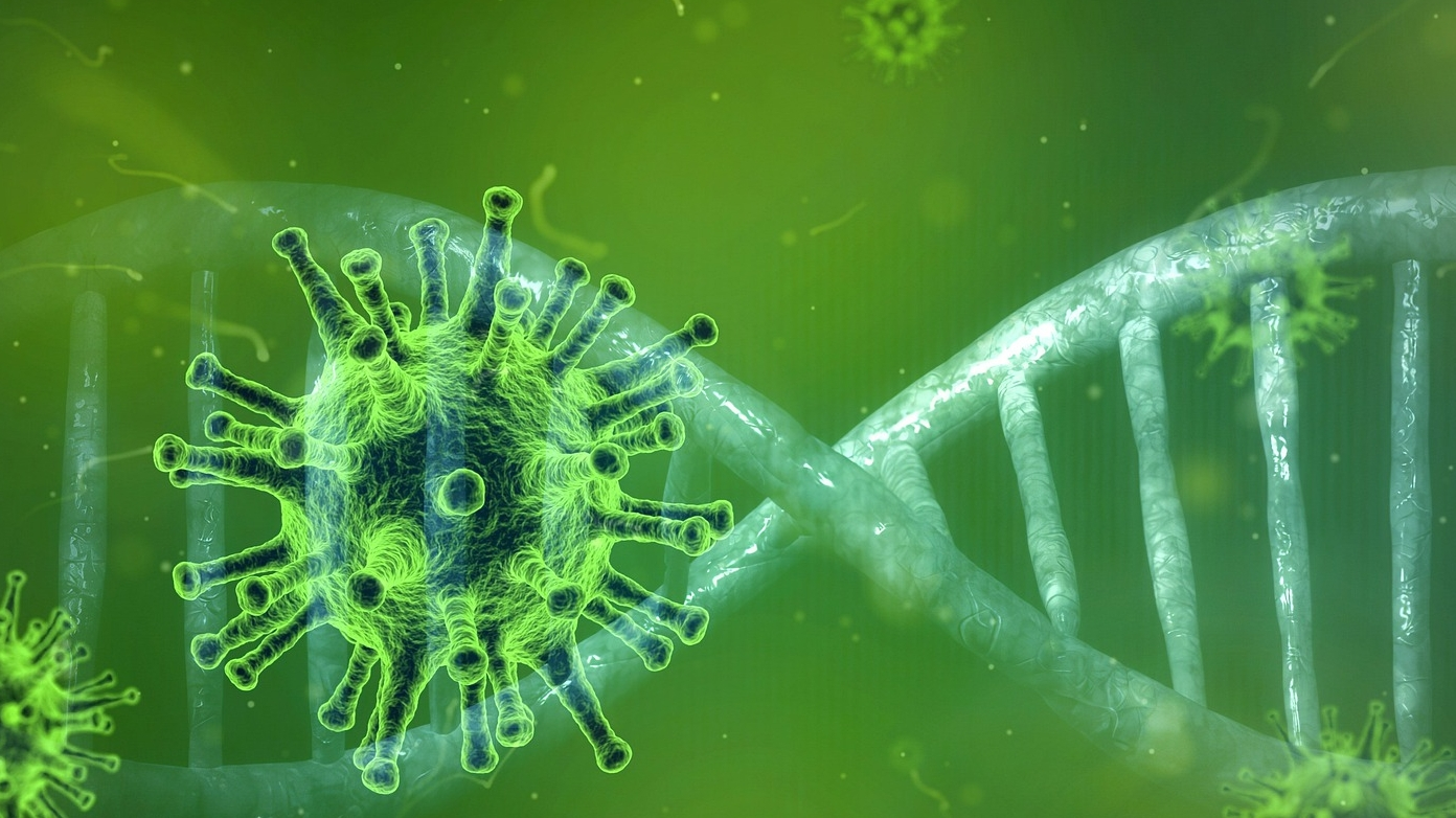 Mutaciones y adaptaciones del SARS-CoV-2